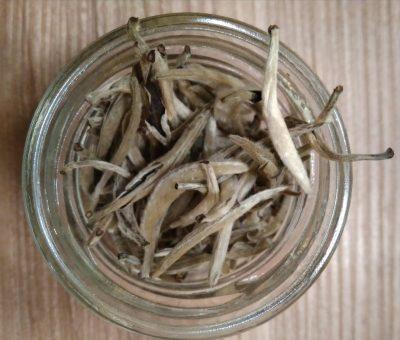 Silvery pekoe Yin Zhen